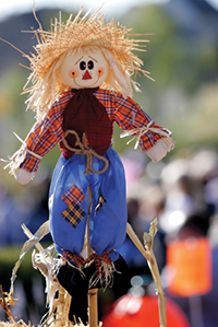 200-scarecrow